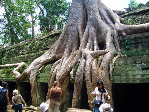 ◆魅惑の世界遺産・アンコールワット&バンコク周遊◆
